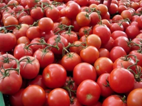 Tomato Pesto Sauce!
