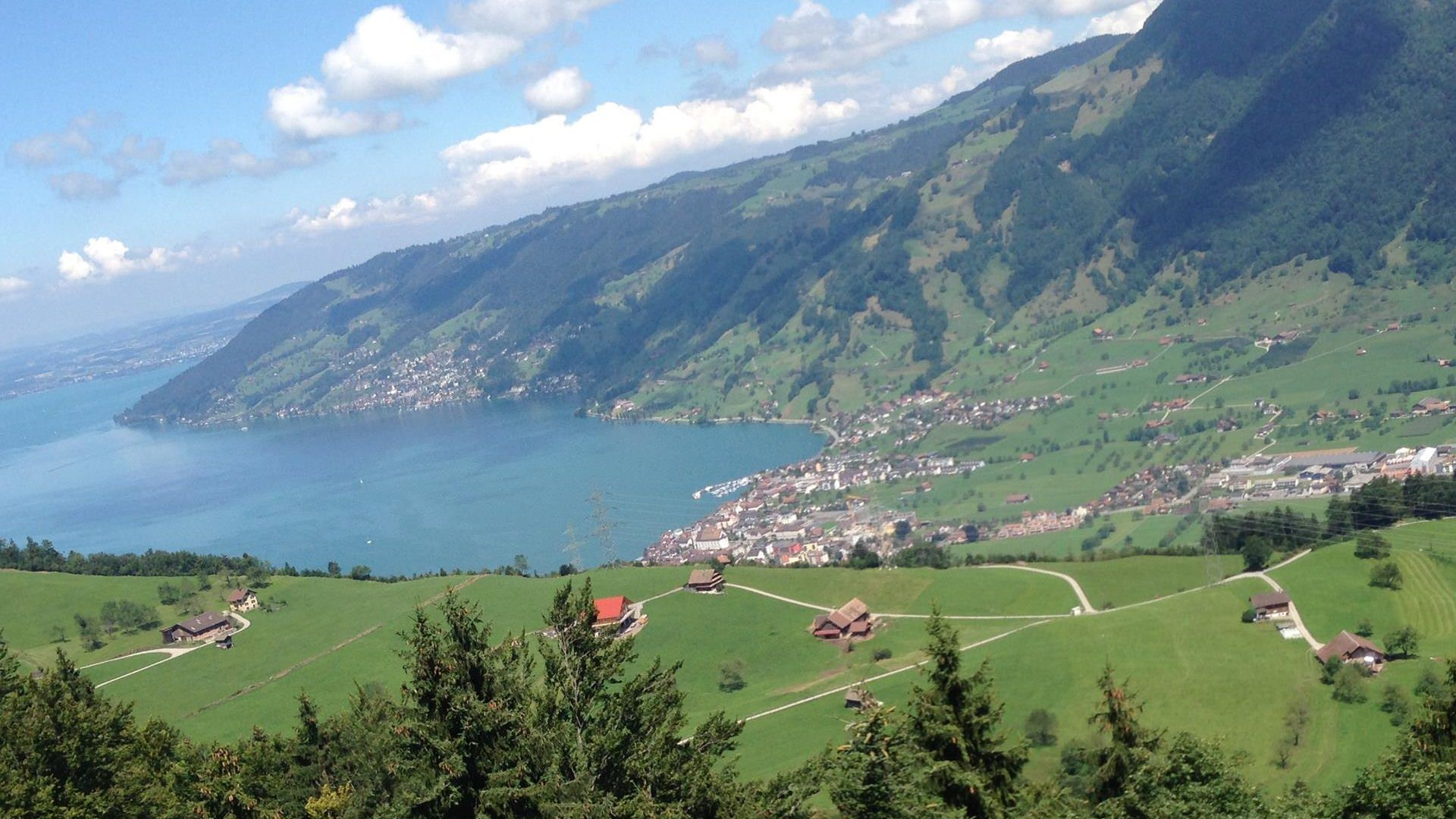 goldau transit (2)-Switzerland