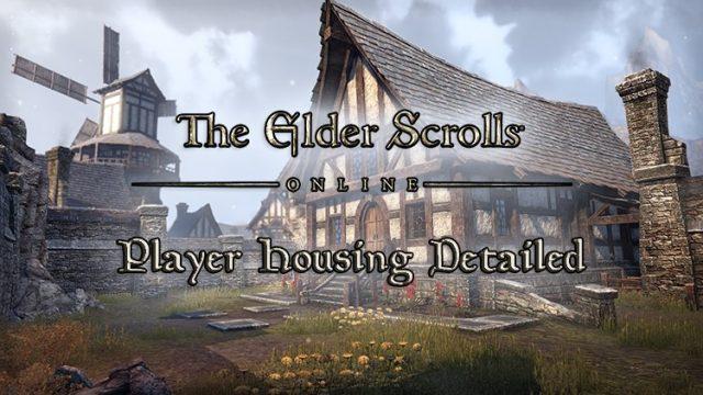 The Elder Scrolls Online Details The Homestead Player