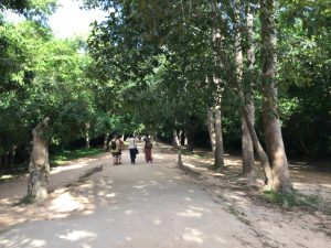 angkor-wat-ta-prohm-perfect-gamer-holiday-dirt-path