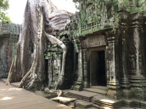 angkor-wat-ta-prohm-perfect-gamer-holiday-inner-tree-overgrown-uncharted
