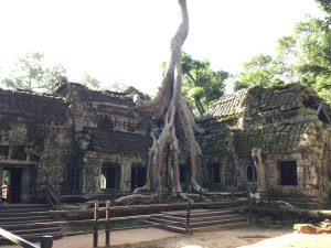 angkor-wat-ta-prohm-perfect-gamer-holiday-tomb-raider-tree-1