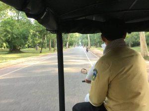 bayon-angkor-thom-perfect-gamer-holiday-south-gate-greenery