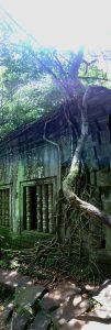 beng-mealea-koh-ker-perfect-gamer-holiday-climbing-tree