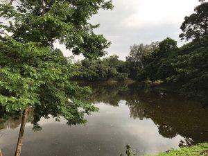 east-of-angkor-perfect-gamer-holiday-bakong-moat