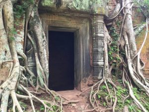prasat-pram-perfect-gamer-holiday-jungle-trees