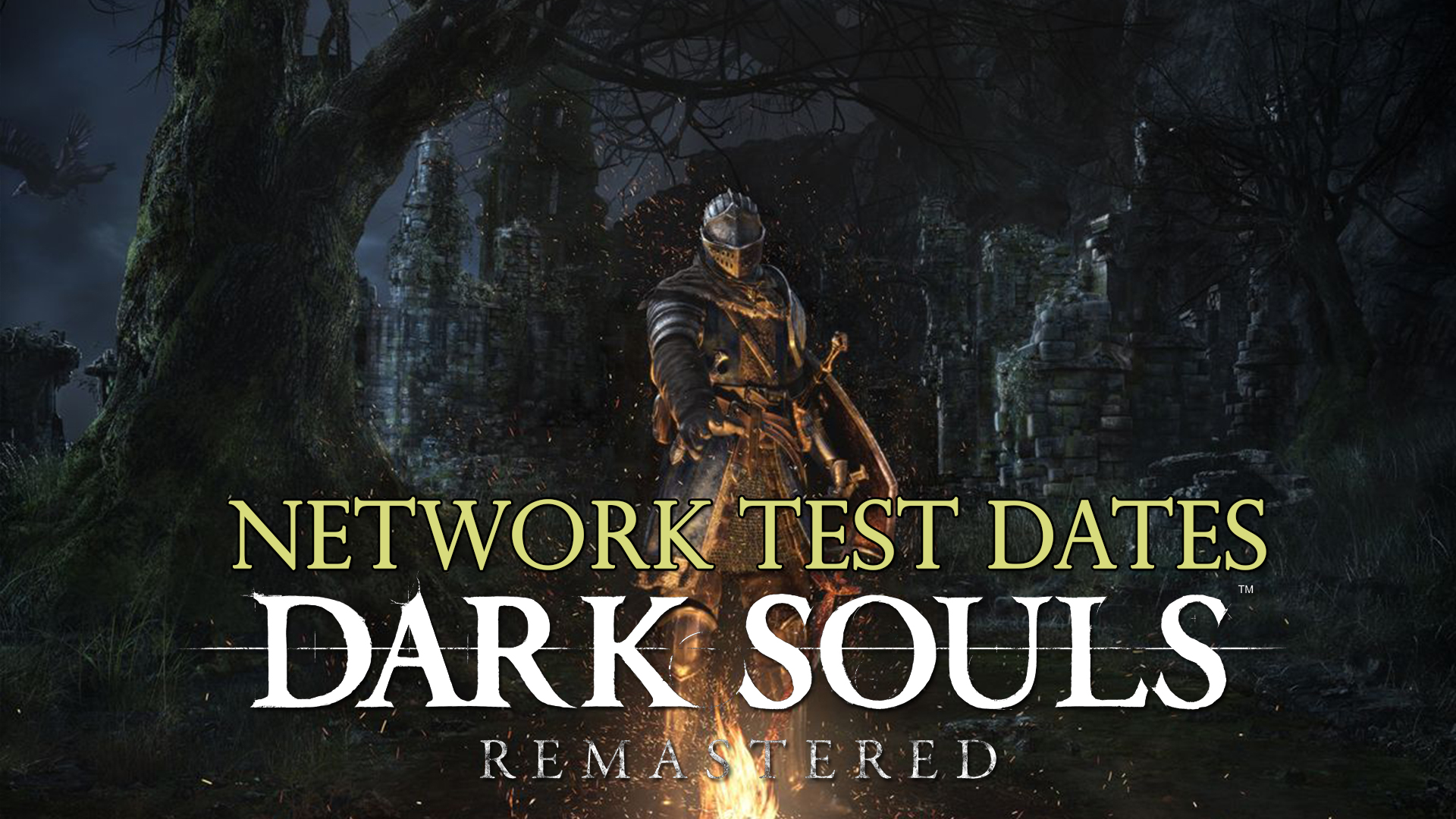 dark souls remastered how to get past dragon