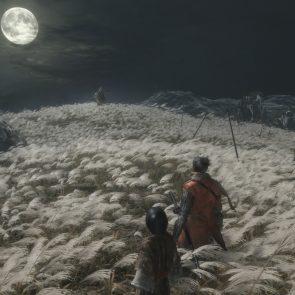 Sekiro_03_shadows_die_twice_screenshots_miyazaki