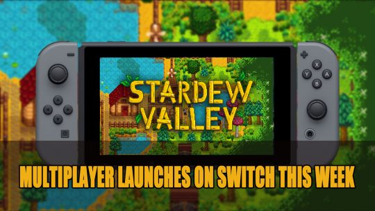 Stardew Valley Gets Multiplayer Support on Nintendo Switch This Week