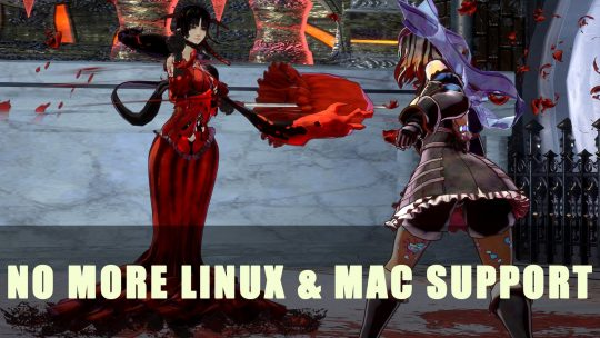 Bloodstained Ritual of the Night: No Longer Supports Linux & Mac