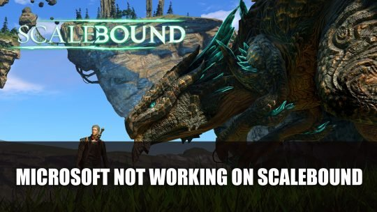 Xbox Head Shatters Hope of A Scalebound Revival