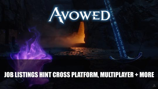 Avowed Job Listings Hint Cross Platform, Multiplayer Plus More