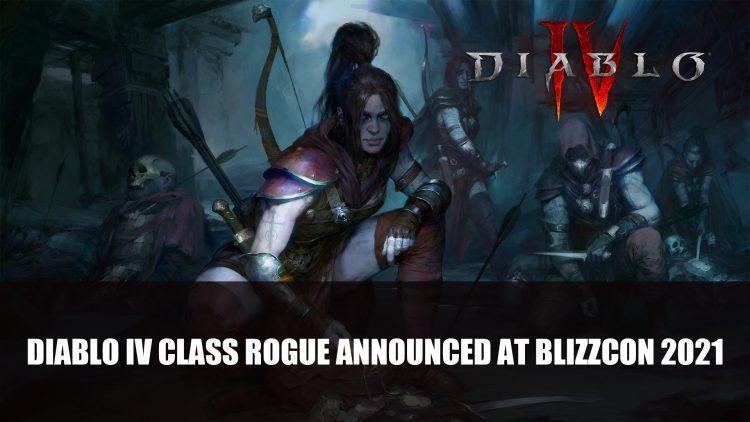 Diablo 4 Class Rogue Announced At BlizzConline 2021