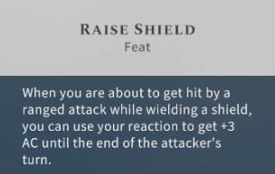 Solasta Raise Shield