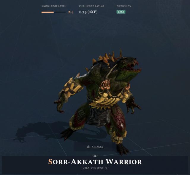 Solasta Sorak Warrior