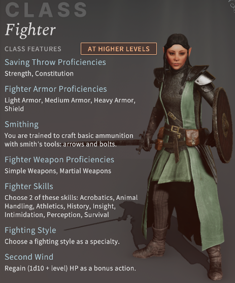 Solasta Fighter Class