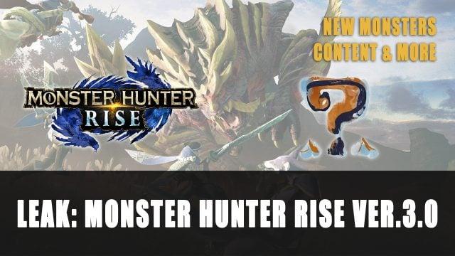 Leak: Rise Monster Hunter Ver.3.0 Content
