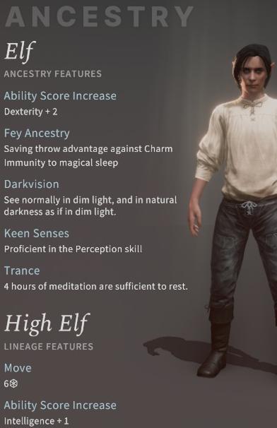 Solasta High Elf Rogue